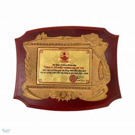 Kỷ niệm chương VHV_KNC5