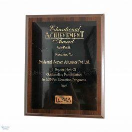 Kỷ niệm chương VHV_KNC10